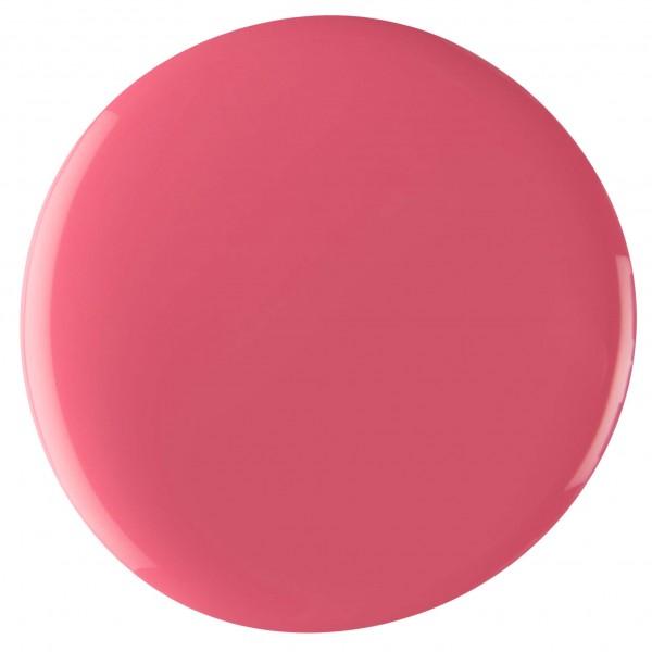 0065 FARB-GEL 4,5 GR PINK ICEBERG