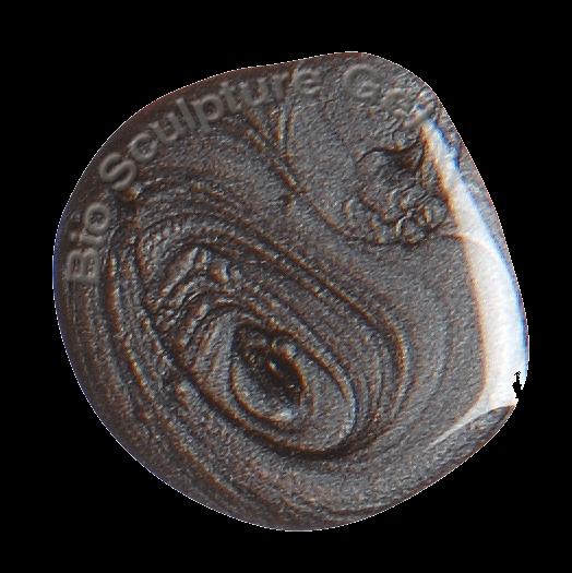 2035 FARB-GEL 4,5 GR CAST IRON